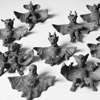 bats_and_dragons